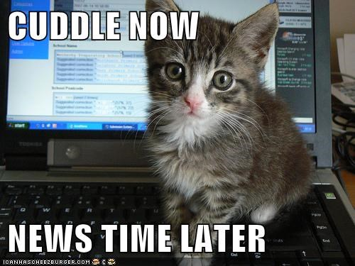 CUDDLE NOW  NEWS TIME LATER