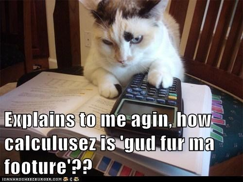 Explains to me agin, how calculusez is 'gud fur ma footure'??