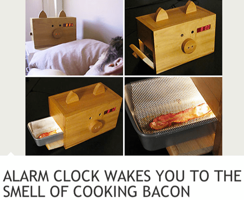 pig,alarm clocks,bacon,monday thru friday,g rated