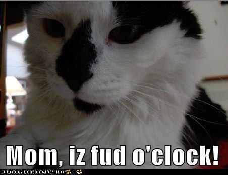 Mom, iz fud o'clock!