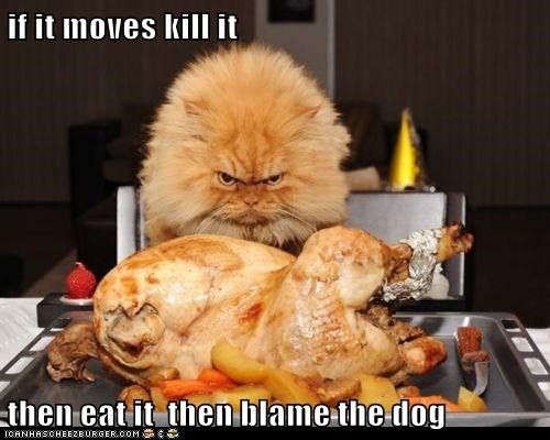 if it moves kill it  then eat it  then blame the dog