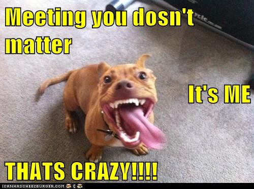 Meeting you dosn't matter It's ME  THATS CRAZY!!!!
