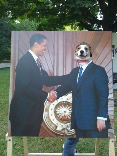 This Was a Great Day for Dog-U.S. Relations