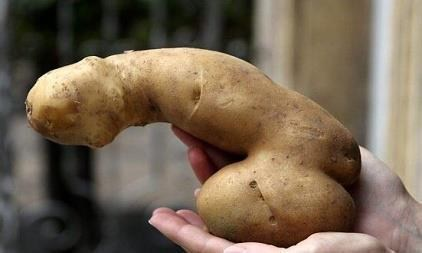 This Potato Looks Like Something