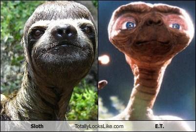 Aliens,E.T,totally looks like,sloths