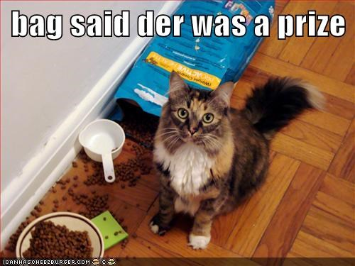 I've Seen Small Hoomin Do Dis With Cereal