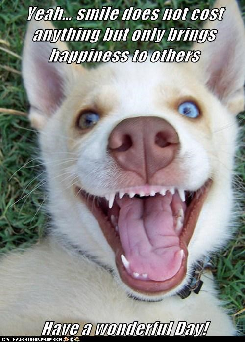 Yeah… smile does not cost  anything but only brings happiness to others                                                            Have a wonderful Day!