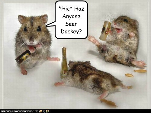 *Hic* Haz Anyone Seen Dockey?