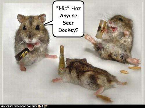 *Hic* Haz Anyone Seen Dockey?