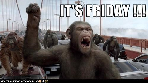 IT'S FRIDAY !!!