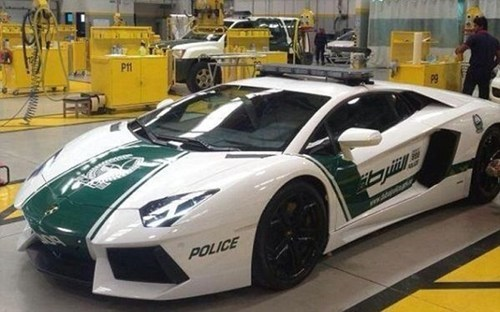 Dubai's Police Force Does Not Kid Around