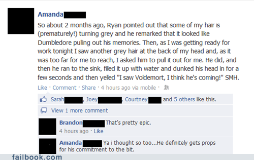 troll in the dungeon,Harry Potter,gray hair,trolling,failbook,g rated