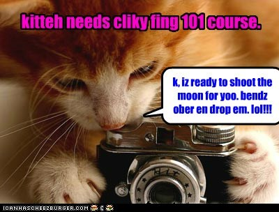 Kitteh Needs Cliky Fing 101 Course.