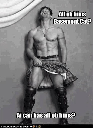 All ob hims Basement Cat?