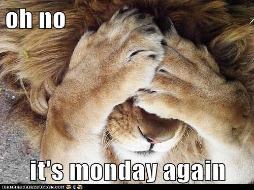 oh no  it's monday again