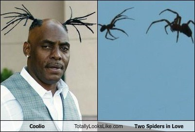 Coolio's Braids Totally Looks Like Two Spiders in Love