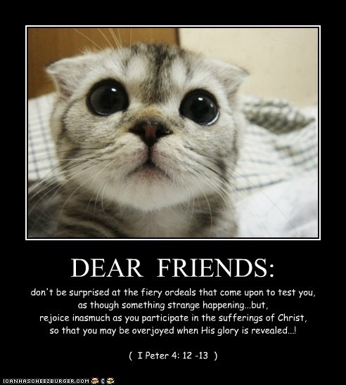 DEAR  FRIENDS: