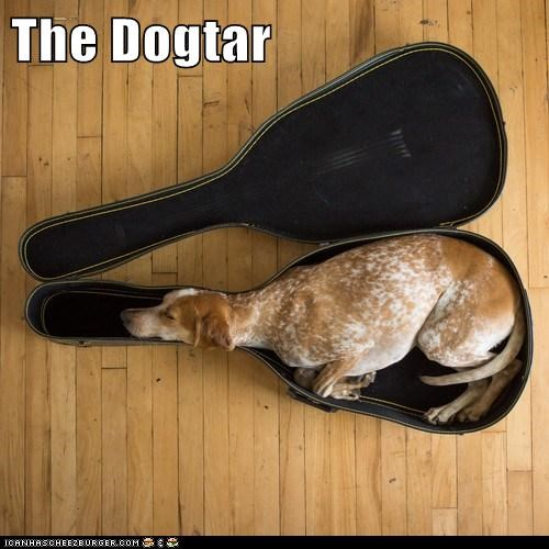 The Dogtar