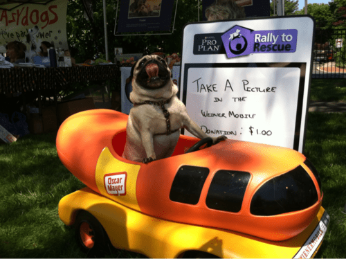 I Has a Hot Dogmobile