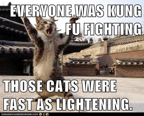 EVERYONE WAS KUNG FU FIGHTING  THOSE CATS WERE FAST AS LIGHTENING.