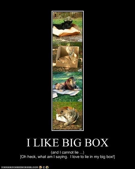 I LIKE BIG BOX