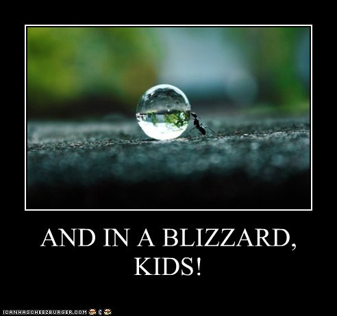 AND IN A BLIZZARD, KIDS!