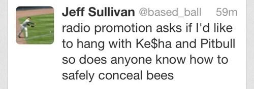 twitter,pitbull,jeff sullivan,bees,kesha
