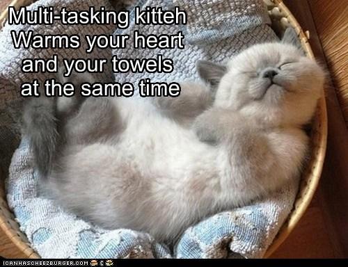 multi tasking,squee