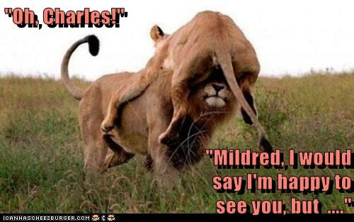 """""""Oh, Charles!""""  """"Mildred, I would                                                         say I'm happy to                                                     see you, but  ...."""""""