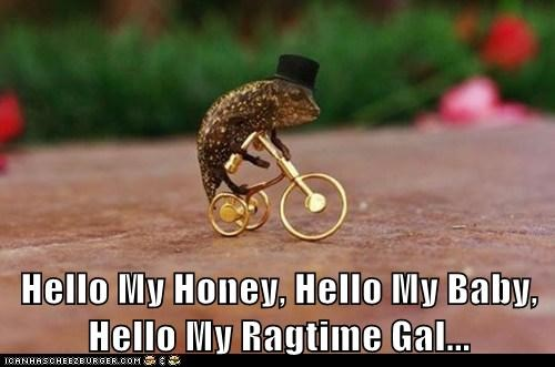 Hello My Honey, Hello My Baby, Hello My Ragtime Gal...