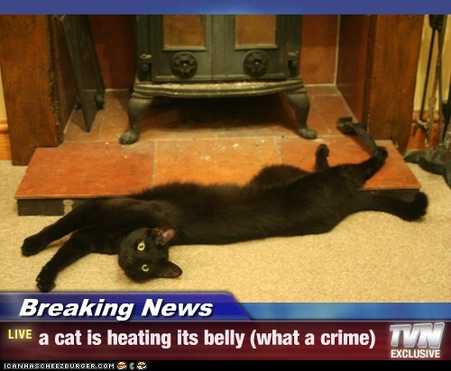 breaking news LIVE!