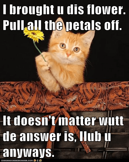 I brought u dis flower. Pull all the petals off.  It doesn't matter wutt de answer is, Ilub u anyways.