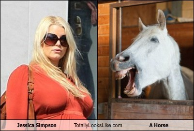 Jessica Simpson Totally Looks Like  A Horse