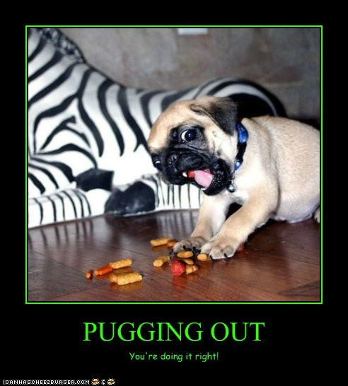 PUGGING OUT