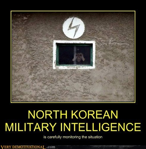 vigilance,North Korea,binoculars