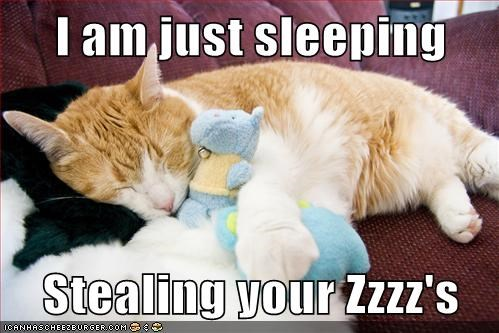 I am just sleeping  Stealing your Zzzz's