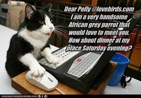 Dear Polly...