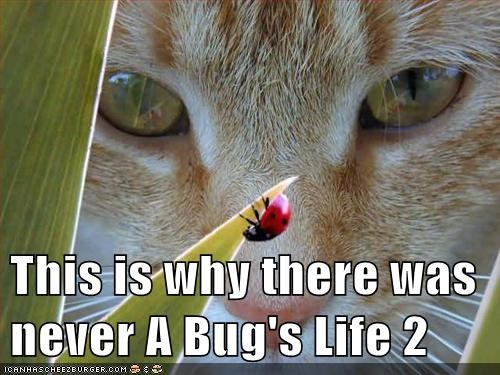 This is why there was never A Bug's Life 2