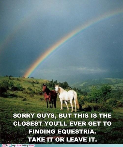 rainbows,IRL,horses,equestria