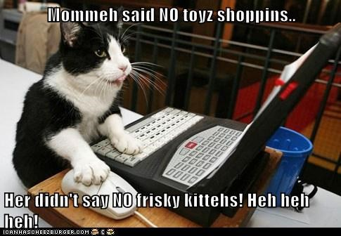 Mommeh said NO toyz shoppins..  Her didn't say NO frisky kittehs! Heh heh heh!