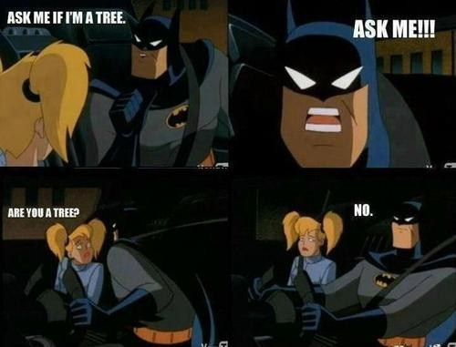 Batman's Lost His Sanity