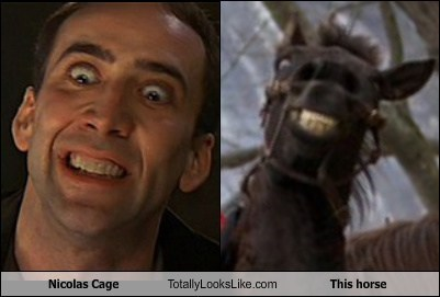 Nicolas Cage Totally Looks Like This horse