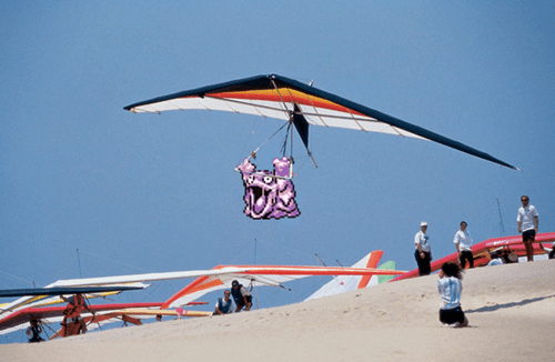Grimer Loves Hang Gliding