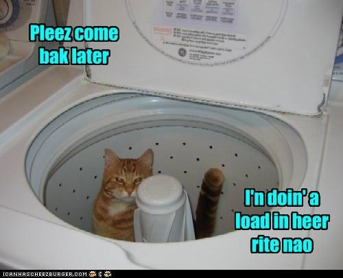 laundry,washing machine