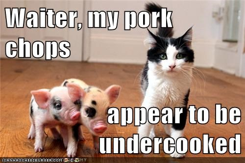 Waiter, my pork chops  appear to be undercooked