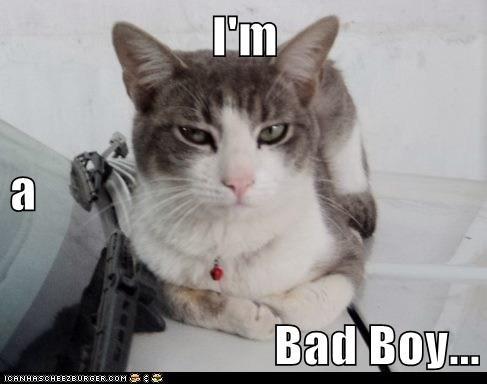 I'm a Bad Boy...