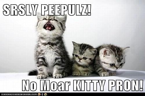 SRSLY PEEPULZ!  No Moar KITTY PRON!