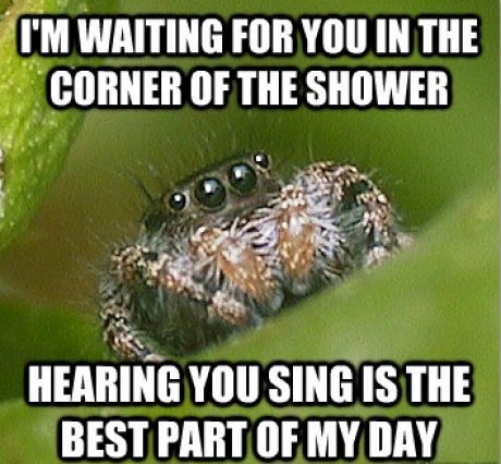 Misunderstood Spider Just Likes Your Singing
