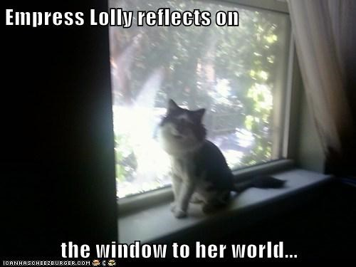 Empress Lolly reflects on  the window to her world...