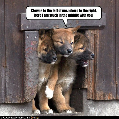 One in Three Puppies Love Classic Rock